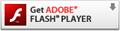 Adobe Flash Playe