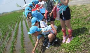 園外保育(みのり幼稚園)