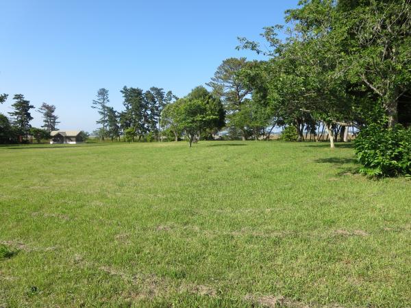和田公園1