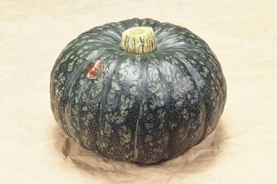 江戸崎かぼちゃ