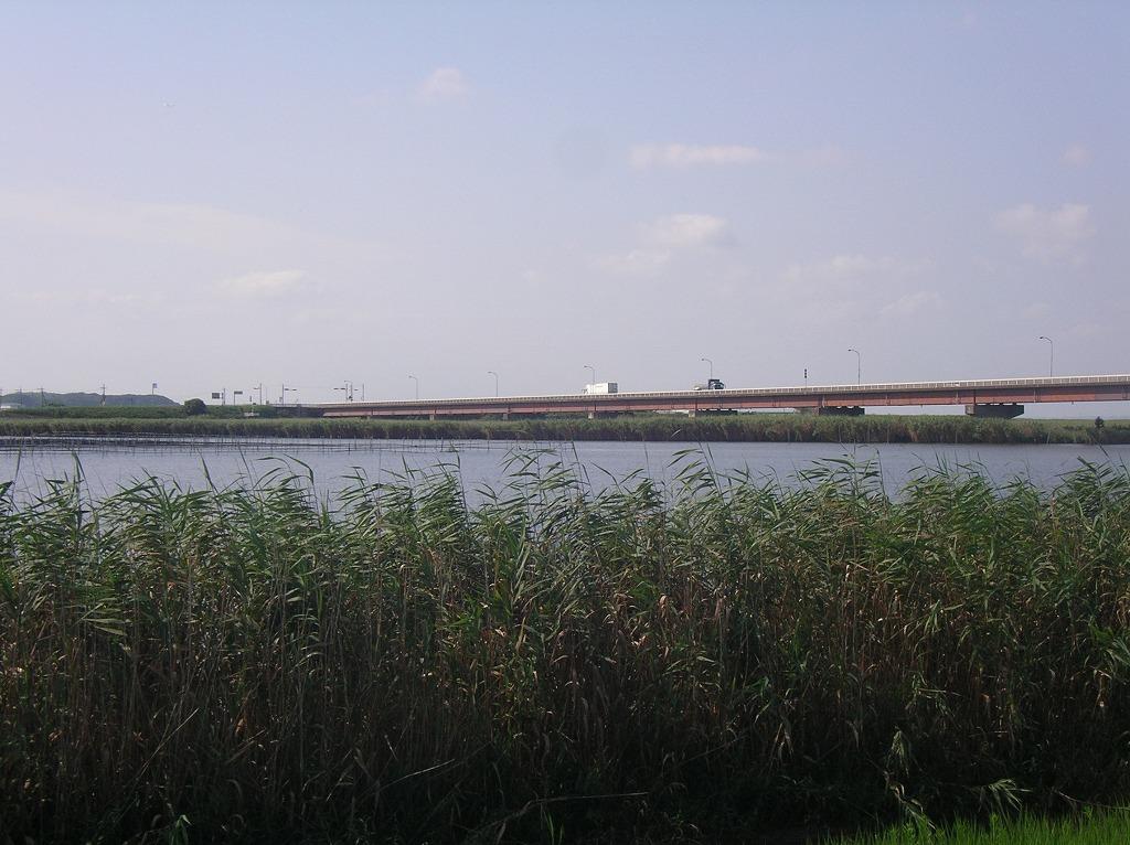 施設:新利根川河口付近