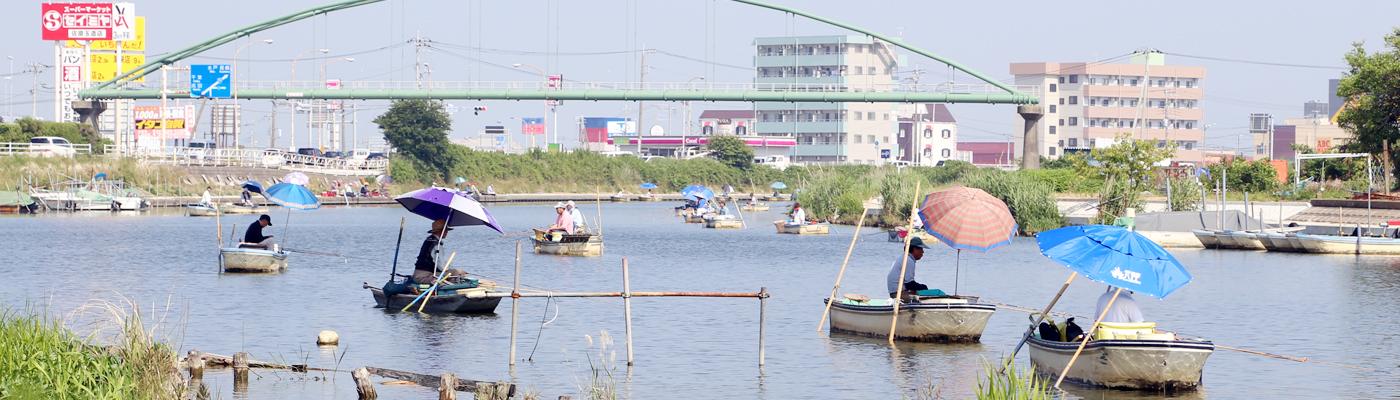 フナ釣り大会