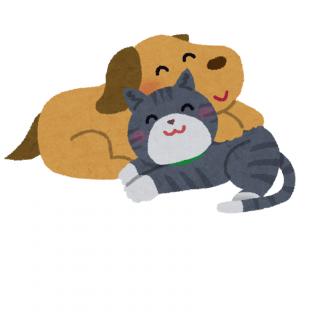 『犬猫一時預かりサポーター募集』の写真